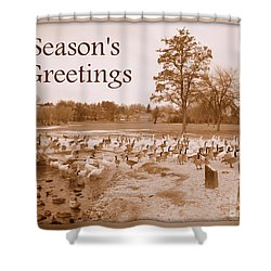 Season's Greetings - Winter Pond Shower Curtain by Carol Groenen
