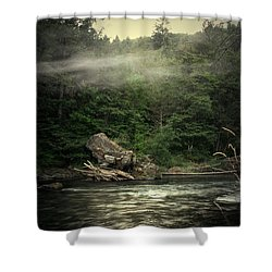 Seclusion On The Trinity Shower Curtain by Joyce Dickens
