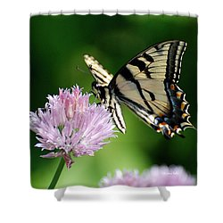 Second Nature Butterfly Shower Curtain by Christina Rollo