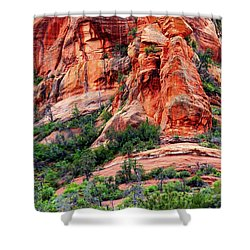 Sedona Perspective Shower Curtain by Carol Groenen