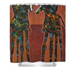 Sedona Sundown Shower Curtain by Lance Headlee