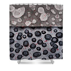 Seeds Of Life Shower Curtain by Darice Machel McGuire