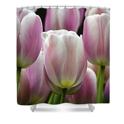 Seeing Pink Shower Curtain by Penny Lisowski