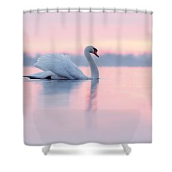 Serenity   Mute Swan At Sunset Shower Curtain by Roeselien Raimond