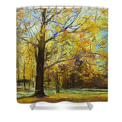 Shades Of Autumn Shower Curtain by Michael Creese
