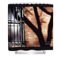 Shadow On The Wall Shower Curtain by Sarah Loft