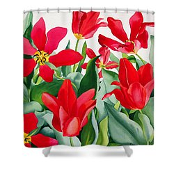 Shakespeare Tulips Shower Curtain by Christopher Ryland