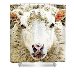 Sheep Art - White Sheep Shower Curtain by Sharon Cummings