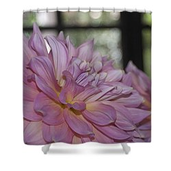 Shine Bright Like A Diamond Shower Curtain by Trish Tritz