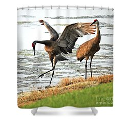 Showoff Shower Curtain by Carol Groenen