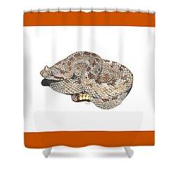 Sidewinder Shower Curtain by Cindy Hitchcock