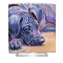 Sigh Shower Curtain by Kimberly Santini
