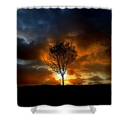 Silence Shower Curtain by Lj Lambert