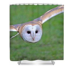 Silent Approach Shower Curtain by Randy Hall