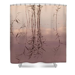 Silent Rhapsody. Sacred Music II Shower Curtain by Jenny Rainbow