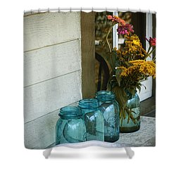 Simple Life 1 Shower Curtain by Julie Palencia