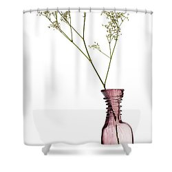 Simplicity Shower Curtain by Dave Bowman