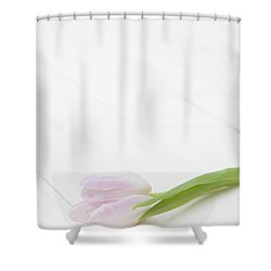 Simply Tulip Shower Curtain by Anne Gilbert