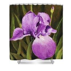Single Iris Shower Curtain by Anastasiya Malakhova