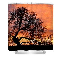 Sky On Fire Shower Curtain by Priya Ghose