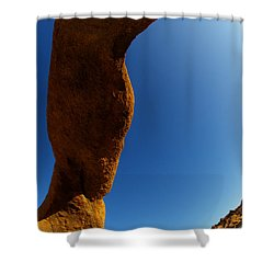 Skyward Shower Curtain by Bob Christopher