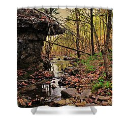 Slate Bottom Creek Shower Curtain by Benjamin Yeager