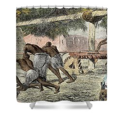 Slaves Irrigating By Water-wheel Shower Curtain by English School