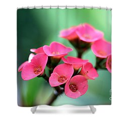 Small Red Flower Shower Curtain by Henrik Lehnerer