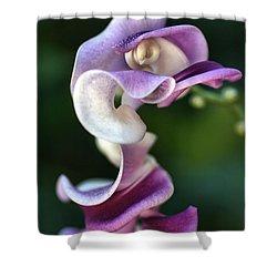 Snail Flower Shower Curtain by Joy Watson