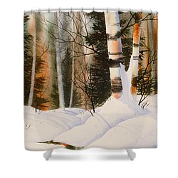 Snow Crevice Shower Curtain by Teresa Ascone