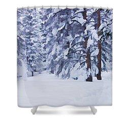 Snow-dappled Woods Shower Curtain by Don Schwartz