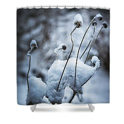 Snow Forms Shower Curtain by Belinda Greb
