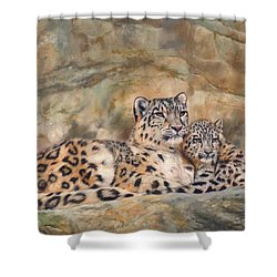 Snow Leopards Shower Curtain by David Stribbling