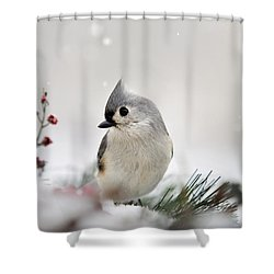 Snow White Tufted Titmouse Shower Curtain by Christina Rollo
