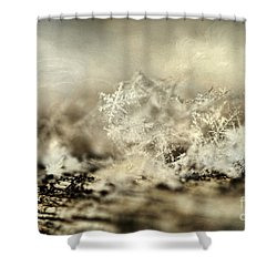 Snowflakes Shower Curtain by Darren Fisher