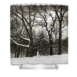 Snowman Shower Curtain by Madeline Ellis