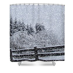 Snowstorm Coming Shower Curtain by Beverly Guilliams