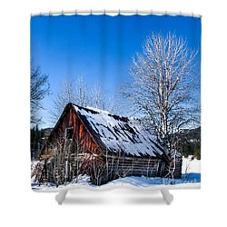 Snowy Cabin Shower Curtain by Robert Bales
