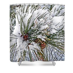 Snowy Pine Shower Curtain by Aimee L Maher Photography and Art Visit ALMGallerydotcom