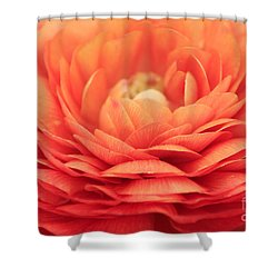 Soft Layers Shower Curtain by Darren Fisher