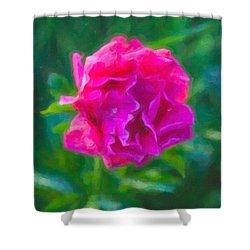 Soft Pink Peony Shower Curtain by Omaste Witkowski
