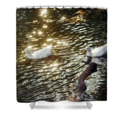 Soft White Shower Curtain by Brian Wallace
