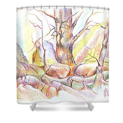 Softly Speaking Shower Curtain by Kip DeVore