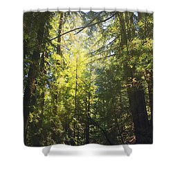 Some Days Really Shine Shower Curtain by Laurie Search