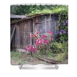 Somewhere Near Geyserville Ca Shower Curtain by Joan Carroll
