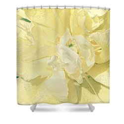 Soothing Daffodils Shower Curtain by Sonali Gangane