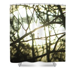 Soothing Force Shower Curtain by Sonali Gangane