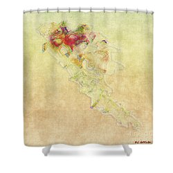 Soul In Flight Shower Curtain by RC DeWinter
