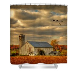 South For The Winter Shower Curtain by Lois Bryan