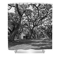 Southern Lane Monochrome Shower Curtain by Steve Harrington